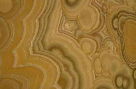 Onyx-Honey2-440x290